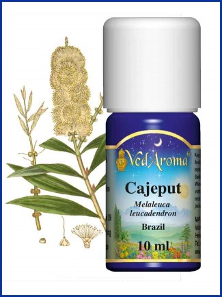 Cajeput Essential Oil (10 ml)