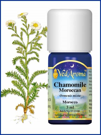 Chamomile Moroccan Essential Oil (3 ml)