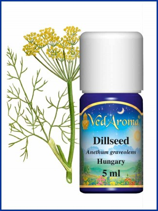 Dill Seed Essential Oil (5 ml)