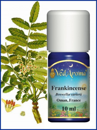 Frankincense (Oman) Essential Oil (10 ml)