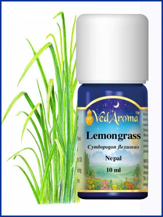Lemongrass Essential Oil (10 ml)