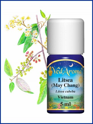 Litsea (May Chang) Essential Oil (7 ml)