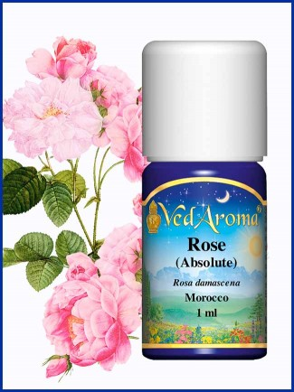 Rose Absolute (1 ml)