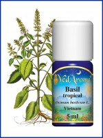 Basil Tropical Essential Oil (5 ml)
