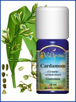Cardamom Essential Oil (10 ml)