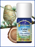 Cedar Atlas Essential Oil (10 ml)