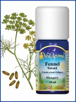 Fennel Sweet Essential Oil (10 ml)