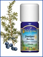 Juniper Berry Essential oil (10 ml)