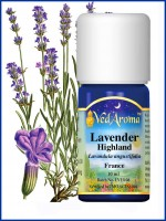 Lavender Highland Essential Oil (10 ml)