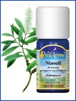 Niaouli Essential Oil (10 ml)