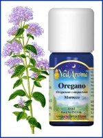 Oregano Essential Oil (10 ml)