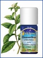 Osmanthus Absolute (3 ml)