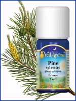 Pine Sylvester Essential Oil (10 ml)