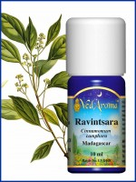 Ravintsara Essential Oil (10 ml)