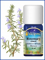 Rosemary Cineol Essential Oil (10 ml)