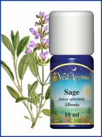 Sage Essential Oil (10 ml)