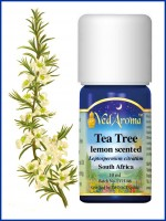 Tea Tree (Lemon-Scented) Essential Oil (10 ml)