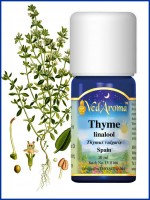 Thyme Linalool Essential Oil (10 ml)
