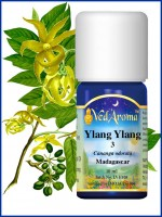 Ylang Ylang 3 Essential Oil (10 ml)
