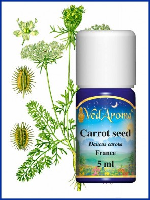 Carrot Seed Essential Oil (5 ml)