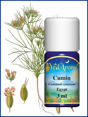 Cumin Essential Oil (3 ml)