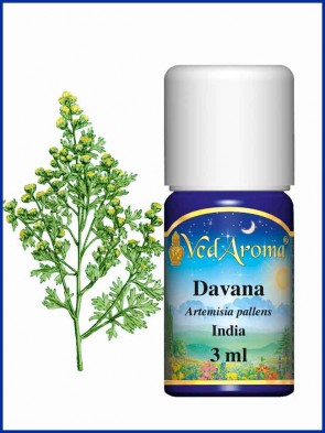 Davana Essential Oil (3 ml)