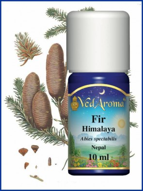 Fir Himalaya Essential Oil (10 ml)
