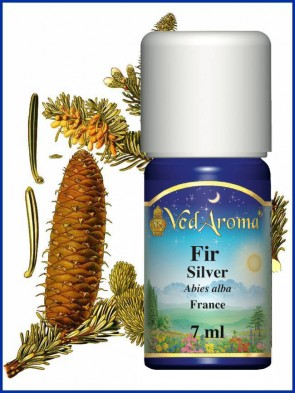 Fir Silver Essential Oil (7 ml)