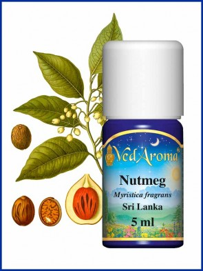 Nutmeg Essential Oil (5 ml)
