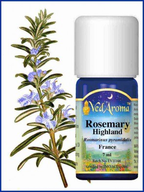 Rosemary Highland Essential Oil (7 ml)