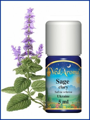 Sage Clary Essential Oil (5 ml)