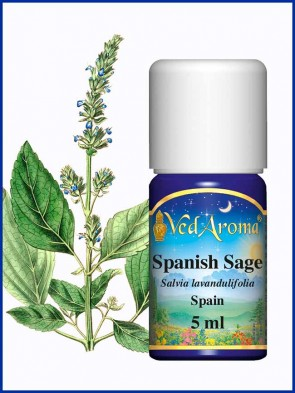 Spanish Sage Essential Oil (5 ml)